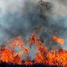 Burning off Stubble by Julie Sleeman