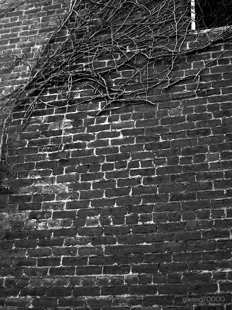 Red Brick Building and Ivy by glennc70000