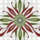 Christmas Flower (2) by catherine barnhoorn