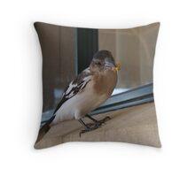 Cracticus nigrogularis - Pied butcherbird Throw Pillow