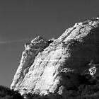 Zion National Forest by p-h-photo