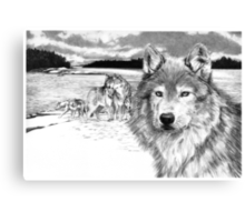 Wolves at Rainey Lake Canvas Print