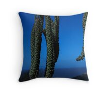 Catkins in Blue Throw Pillow