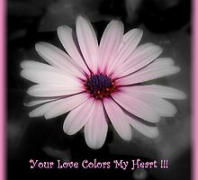 The Colors Of My Heart ~ Part One by artisandelimage