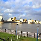 Thames Barrier standing tall  - London  by Arvind Singh