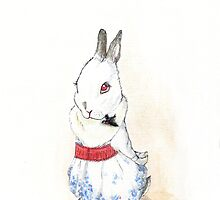 Alice the white rescue rabbit by roseyland
