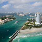 Bird's Eye View of Miami by Kasia-D