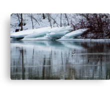 Bufflehead Duck and Ice Formation, Niagara River, Ontario Canvas Print