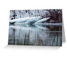 Bufflehead Duck and Ice Formation, Niagara River, Ontario Greeting Card