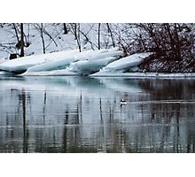 Bufflehead Duck and Ice Formation, Niagara River, Ontario Photographic Print