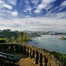 Overlooking Biarritz by Mark Tomlinson