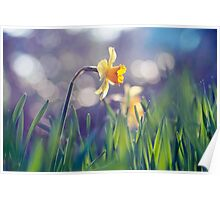 The Light of Spring Poster