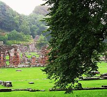 Drizzle At Furness Abbey by artwhiz47