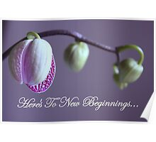 Here's To New Beginnings Poster