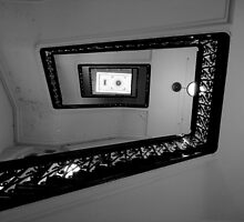 Going up? by Of Land & Ocean - Samantha Goode
