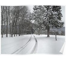 country snow Poster