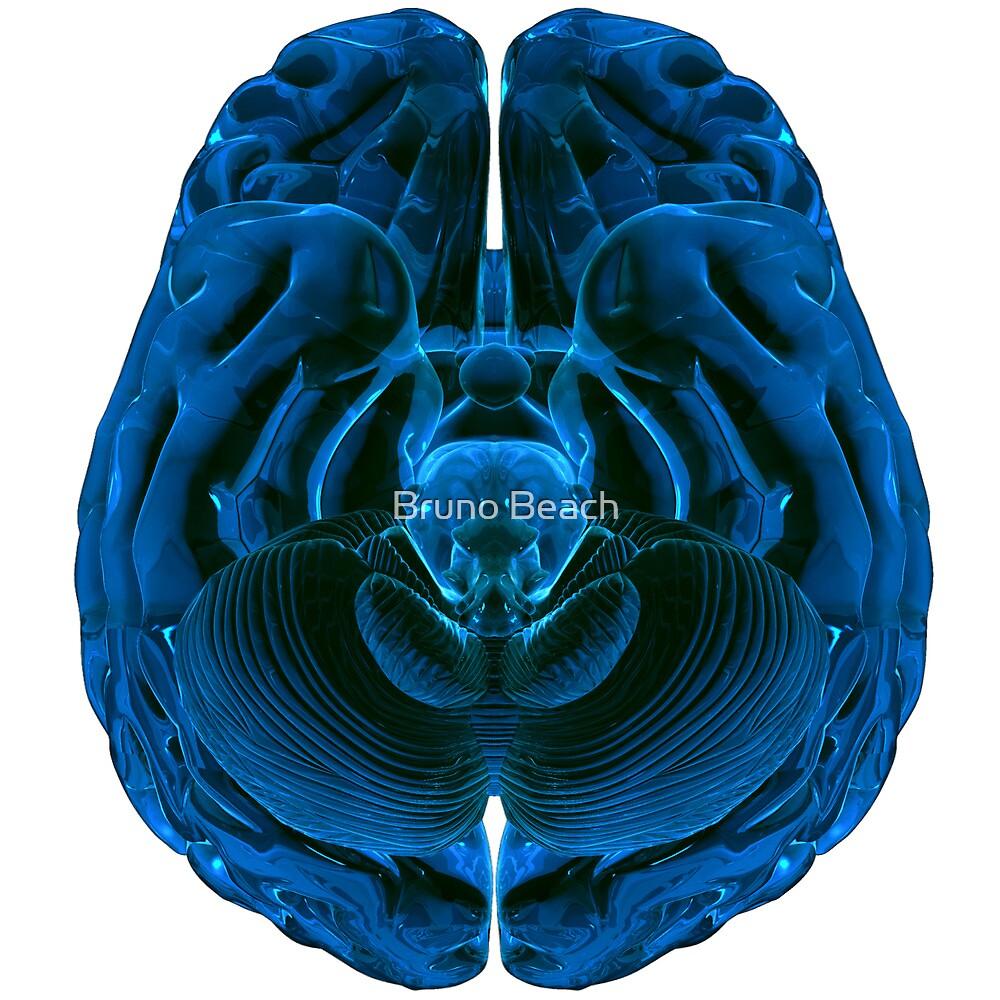 Brain by Digital Editor .