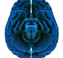 Brain by Atanas Bozhikov NASKO