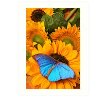 Blue Butterfly On Sunflower Art Print