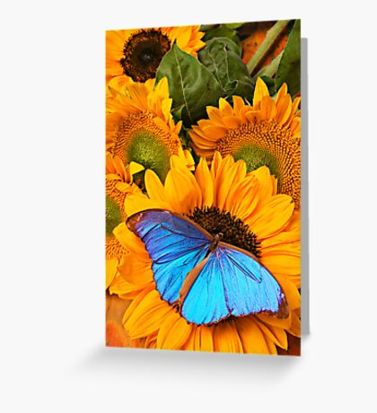 Blue Butterfly On Sunflower Greeting Card