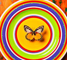 Butterfly On Plate by Garry Gay