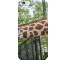 My Long Necked Friend  iPhone Case/Skin