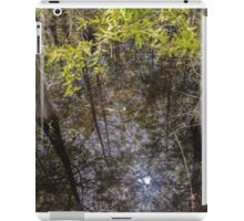 Reflective Sunlight at the Slough iPad Case/Skin