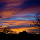 Desert Sunset by Angela Pritchard