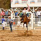 Rodeo - Bucking Bronco  by Buckwhite