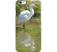 Egret iPhone Case/Skin