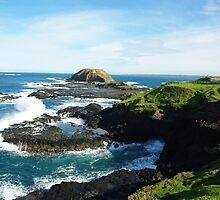Coastline Phillip Island Australia by Alison Murphy