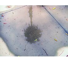 i can still see our dreams after the rain has washed the world away Photographic Print