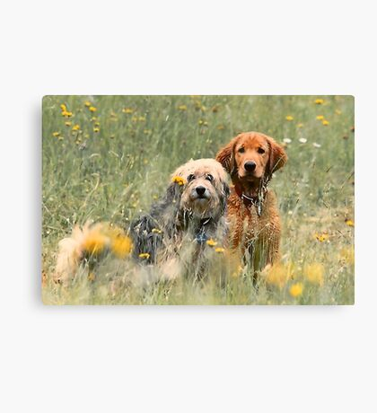 Kate and Sam - In the Meadow Canvas Print