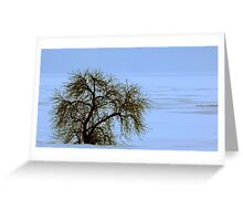 Lone Willow on a Frozen Shoreline Greeting Card