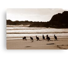 Day out at the Beach Canvas Print