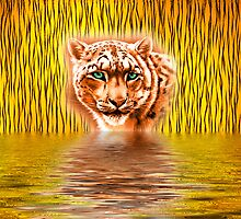 Tiger Upon Reflection by Cheryl Hall