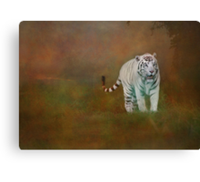 W is for......White Tiger Canvas Print
