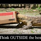 Think outside the box by Webitect