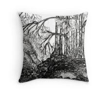 Valley Creek Throw Pillow