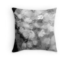 The Age of Reason (Poetry & Truth ) Throw Pillow