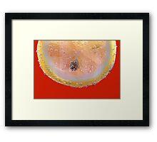 lemon bubbles.. Framed Print