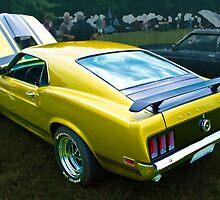Mustang Boss 302 by Stuart Row