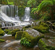 Horseshoe Falls by mspfoto