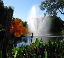 Waring Gardens, Deniliquin NSW by nbrettoner