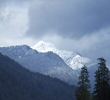Snow in the Olympics by Loisb