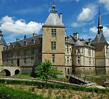 Chateau Sully, Burgundy, France by TeaCee