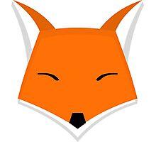 Vectorial Fox Photographic Print
