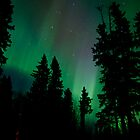 The Get out of Bed Honey the Auroras are Out #2 by peaceofthenorth