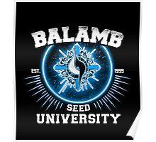 Balamb university Poster