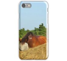 At the Stables iPhone Case/Skin